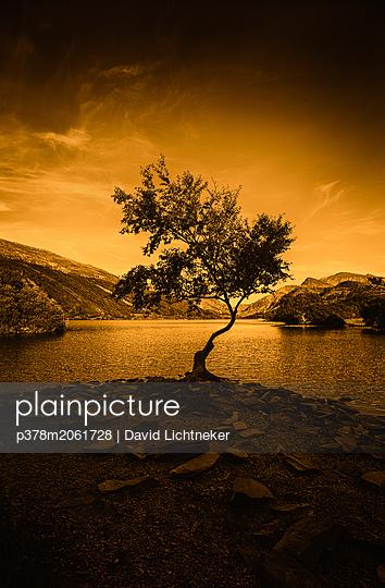 p378m2061728 von David Lichtneker