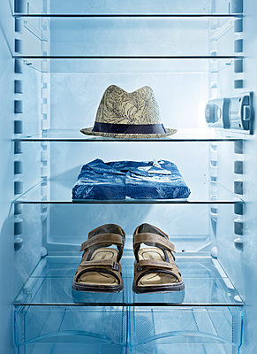 Sommerkühlschrank - p1370m2044259 von Uwe Reicherter