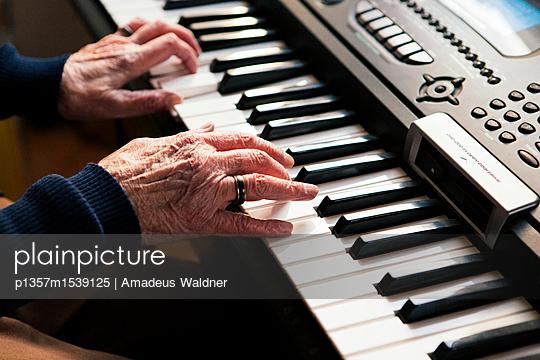 p1357m1539125 by Amadeus Waldner