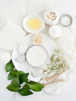 Plate with skin cream, plants and leaves - p429m801687 by Magdalena Niemczyk - ElanArt
