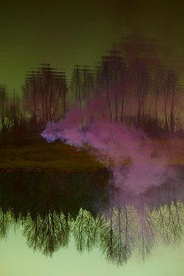 Purple smoke - p1010m2278376 by timokerber