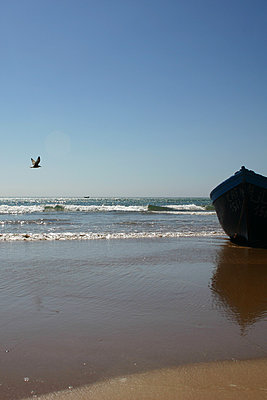 Rowing boat on the beach near Essaouira - p1105m2063399 by Virginie Plauchut