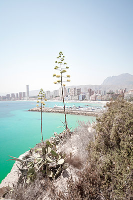 View from the coast onto Benidorm, Costa Blanca, Spain - p1598m2164419 by zweiff Florian Bier