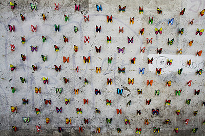 Butterflys on a wall - p277m729236 by Dieter Reichelt