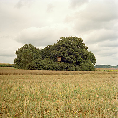 Stand, Bavaria - p1214m1017169 by Janusz Beck