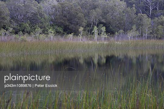 p343m1089876 von Peter Essick