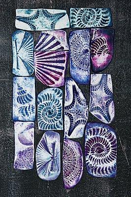 Falsche Fossilien - p237m1108727 von Thordis Rüggeberg
