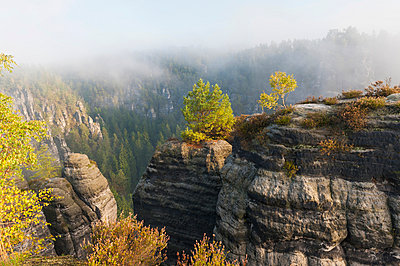 Germany, Saxony, Saxon Switzerland, National Park, Bastei rock formation - p300m981665f by Jana Mänz