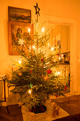 Light Candles On Decorated Christmas Tree, Sweden  - p847m1443780 by Jan Håkan Dahlström