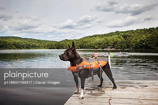 p1166m1164317 von Cavan Images