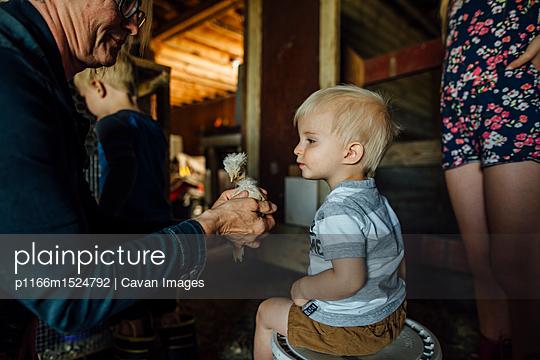 p1166m1524792 von Cavan Images