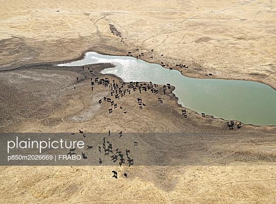 Wasserstelle in der Wüste - p850m2026669 von FRABO