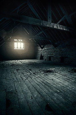 Empty Attic - p1280m2008545 by Dave Wall