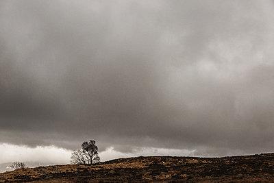 Dunkle Wolken in den Highlands - p1477m2038961 von rainandsalt