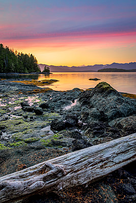 Dusk over Dodd Island in the Broken Group Islands, Pacific Rim National Park Reserve; British Columbia, Canada - p442m2037155 by Ron Watts