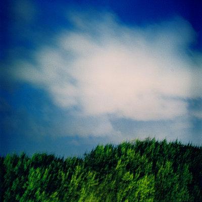 dream hill   - p5673568 by Sandrine Agosti-Navarri