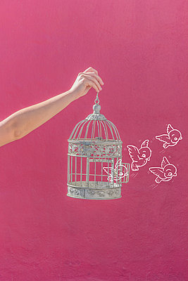 Imaginary birds leaving birdcage - p1165m1216893 by Pierro Luca