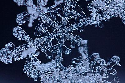 Tauende Schneeflocke - p2351777 von KuS