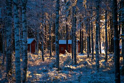 Västernorrland - p235m1116460 by KuS