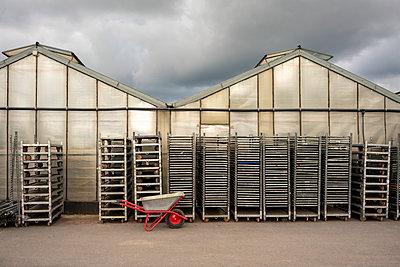Steel racks and wheelbarrow behind greenhouse - p300m2300005 by Vasily Pindyurin