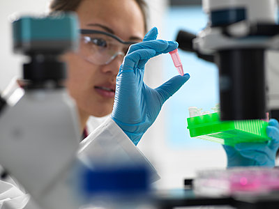 Scientist preparing sample for genetic testing in laboratory - p429m2075396 by Andrew Brookes