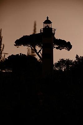 France, La Rochelle, Lighthouse - p945m2182193 by aurelia frey
