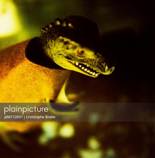 Dinosaur dressed - p56710937 by Christophe Boete