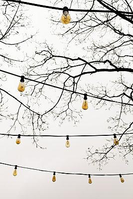 Gartenlicht - p078m2071309 von Michael Fritz