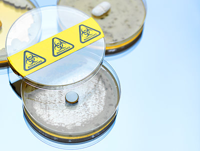 High angle view of drugs testing in petri dishes at laboratory - p300m2143309 by Andrew Brookes