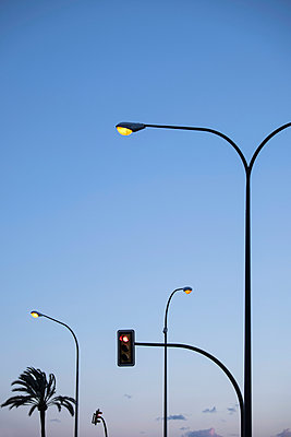 Palm and street lamps - p335m1003222 by Andreas Körner