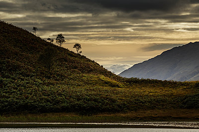 Highlands - p910m2008150 by Philippe Lesprit