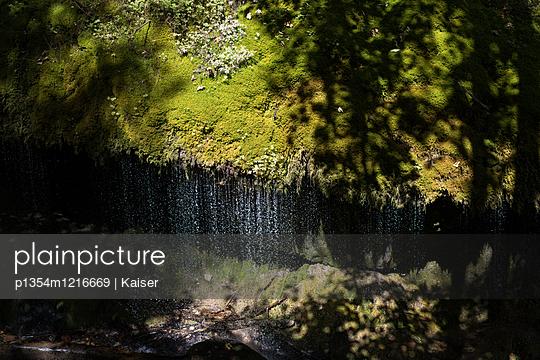 Wasserfall im Schwarzwald - p1354m1216669 von Kaiser