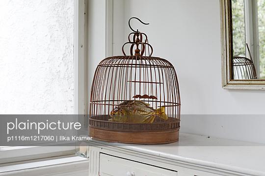 Unfug - p1116m1217060 von Ilka Kramer