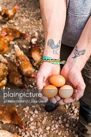Hühnertattoo und Eier 1 - p1388m1586917 von Julia Unkel