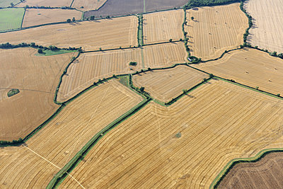 Stubble fields aerial view - p1048m1069291 by Mark Wagner