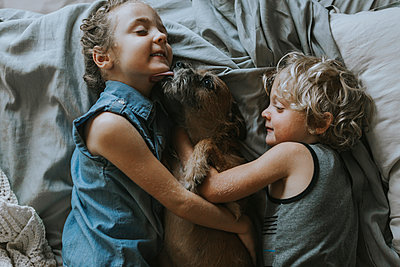 High angle view of siblings lying on bed with dog at home - p1166m1203764 by Cavan Images