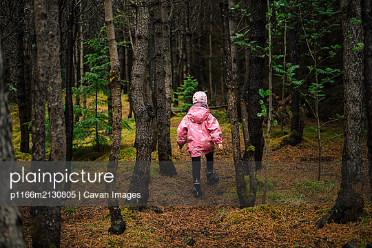 Girl walking in mossy old forest - p1166m2130805 by Cavan Images