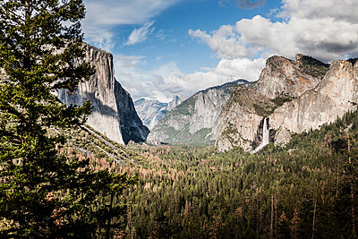 Scenic view of trees growing against rocky mountains, Yosemite National Park, California, USA - p301m1180707 by Patrick Strattner