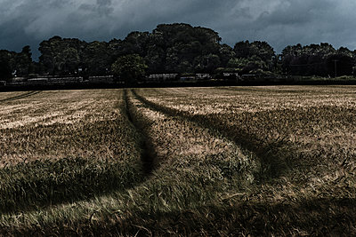 Curved Line in Farmers Field - p1166m2205733 by Cavan Images