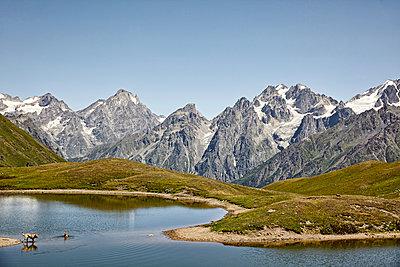Caucasus Mountains - p1305m1132797 by Hammerbacher