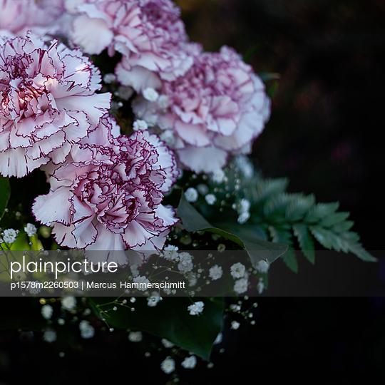 Cloves - p1578m2260503 by Marcus Hammerschmitt