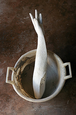 Gypsum arm in a bowl - p1017m2221814 by Roberto Manzotti
