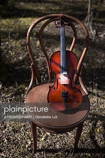Geige im Garten - p1623m2214897 von Donatella Loi