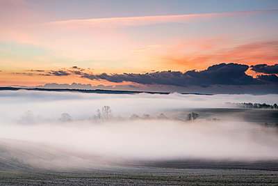 Great Britain, Waft of mist at sunrise - p1516m2158273 by Philip Bedford