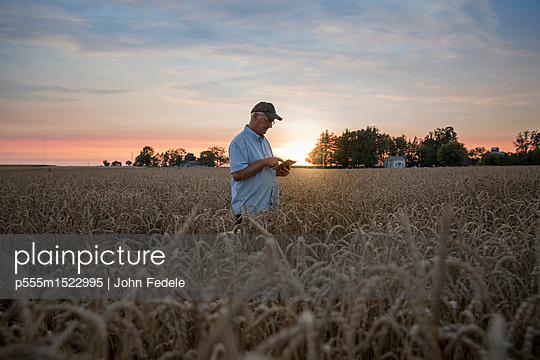 Distant Caucasian man using digital tablet in field of wheat - p555m1522995 by John Fedele