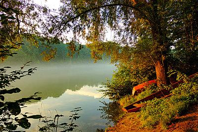 Morgenstimmung am Ennsfluss be Enns - p1463m2292002 von Wolfgang Simlinger