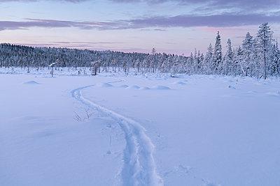 Winter landscape at sunset - p312m2119454 by Johner