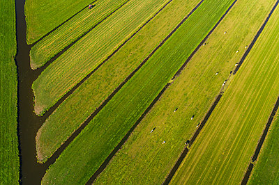 Fields and canals, drone photography, Netherlands - p1132m2215551 by Mischa Keijser
