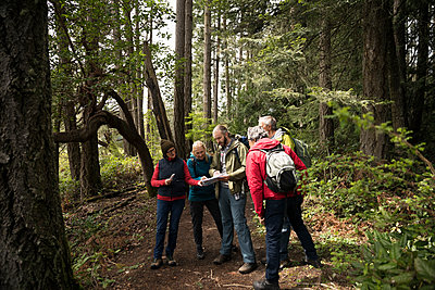 Trail guide with map guiding active senior hikers in woods - p1192m2000430 by Hero Images
