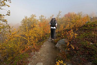 Teenage boy hiking, rear view - p575m719270 by Dag Haugum
